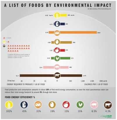 food-energy-efficiency-environmental-impact
